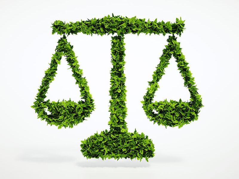 DOCTRINA EN DOS PAGINAS Diario Ambiental Nro 91 – 05-11